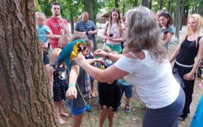 Papoušci a želva v Krtkově světě – Therapy 4U